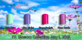 FX Blossom Coll 2019