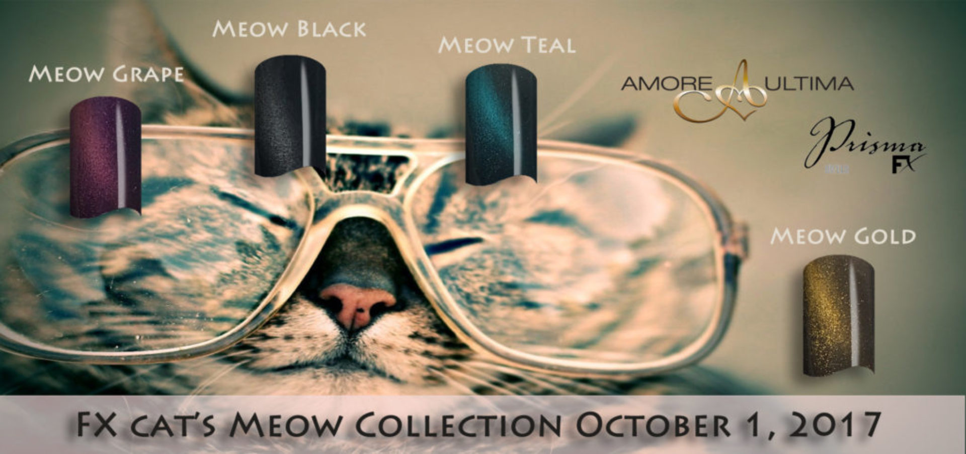 cats meow2017for FX amoresite